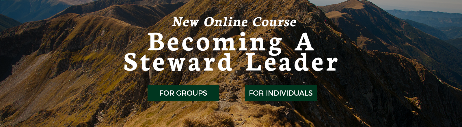Becoming a Steward Leader Online Course